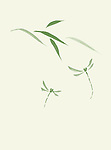 Dragonflies and bamboo leaves artistic oriental style illustration, Japanese Zen Sumi-e ink painting, green on ivory background