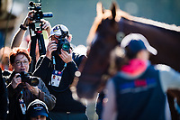 LOUISVILLE, KENTUCKY - MAY 02: at Churchill Downs on May 2, 2017 in Louisville, Kentucky. (Photo by Douglas DeFelice/Eclipse Sportswire/Getty Images)