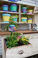 63821-202.09 Potting bench with containers, birdhouse and flowers in spring, Marion Co. IL