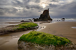 Oregon, northwest, Cannon Beach, Arcadia Beach. An evening view of Arcadia Beach at low tide with sea stacks.