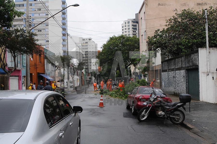 SAO PAULO, SP, 18 Janeiro 2012 .Funcionarios da Prefeitura corta a arvore que caiu na Rua Joaquim Tavora 731 para Liberar a via.  .  (FOTO: ADRIANO LIMA - NEWS FREE)