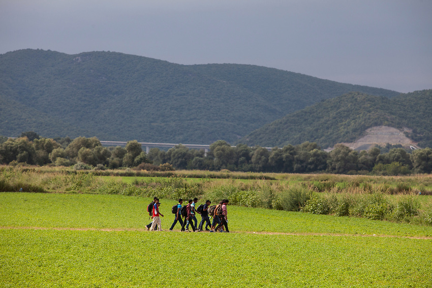 Refugees crossing a field on their way to the Eidomeni, Greece Border crossing ( Greek side)