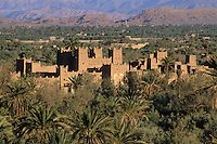 Near Skoura, Morocco - Ameridhil Kasbah in Early Morning Sun, Surrounded by Date Palms, Atlas Mountains in Background.