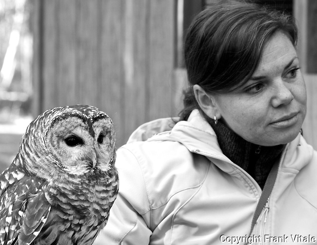 Bianca is a Barred Owl that resides at the Center for Wildlife in Cape Neddick, ME. It is being cared for at the Center for an injury that prevents it from being returned to the wild. Bianca, a long-time resident at the Center, is being shown to a group by Volunteer Wildlife Educator, Sarah Kern.