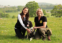 BNPS.co.uk (01202 558833)<br /> Pic:   HartpuryUniversity/BNPS<br /> <br /> Henry the springer spaniel with Lucy Bearman-Brown and Louise Wilson.<br /> <br /> A resourceful sniffer dog is being specially trained to detect hedgehogs - in a bid to save their dwlinding population.<br /> <br /> Henry the springer spaniel locates the prickly creatures so they can be moved out of harm's way ahead of land development projects.<br /> <br /> When he finds one, he quietly sits next to it so his handler can come and investigate, earning a game of fetch as a reward.<br /> <br /> With his remarkable sense of smell, which is 100,000 times more sensitive than a human's, he can detect a hedgehog hidden in a bush 250 yards away.<br /> <br /> The research project, the first to its type, is being overseen by Lucy Bearman-Brown, senior lecturer in Animal Science at Hartpury University