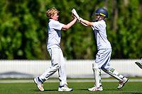 Medbury celebrates a wicket  during the National Primary School Cup Final between Medbury School v Huntley School at the Bert Sutcliffe Oval, Lincoln University, Christchurch, New Zealand. Wednesday 22 November 2017. Photo: John Davidson/www.bwmedia.co.nz