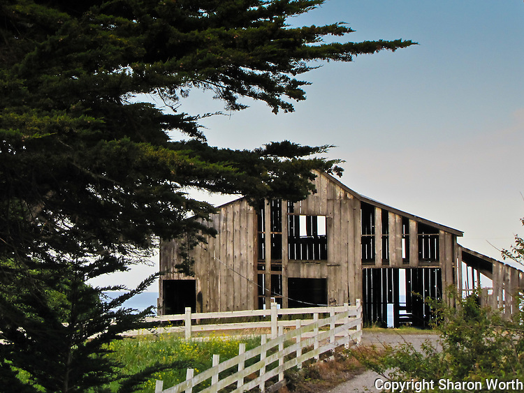Battered by the elements, this weathered barn stands between the road and the ocean.