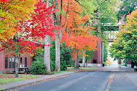 Road to Agricultural and Life Sciences building with fall color. Oregon State University.
