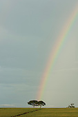Fazenda Cagibi, Brazil. Rainbow above a green field with two trees.