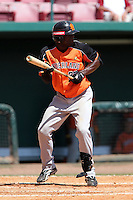 Netherlands National Team outfielder Shaldimar Daantji #23 during a spring training exhibition game against the Tampa Bay Rays at Al Lang Field on March 18, 2012 in St. Petersburg, Florida.  Tampa Bay defeated the Netherlands 4-3.  (Mike Janes/Four Seam Images)