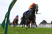 Winner of The Crouch's Down Maiden Auction Fillies Stakes Crazy Luck ridden by Oisin Murphy and trained by Rod Millman during Horse Racing at Salisbury Racecourse on 13th August 2020