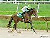 Kawfee Fa Martha winning The Small Wonder on Owners Day at Delaware Park on 9/13/14