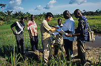 South south cooperation. Chinese technician assisting african farmer in the rice production technology