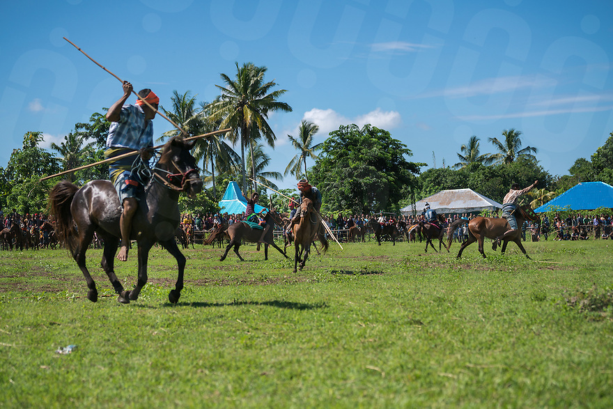 March 28, 2016 - Waiha (Indonesia). A rider gets hit by a spear thrown by an opponent. Riders are grouped into 2 teams, based on their traditional clans. The aim of the Pasola is to throw blunted wooden spears at the opposition riders while trying to avoid their counter attacks. © Thomas Cristofoletti / Ruom