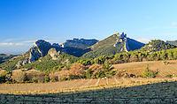 France, Vaucluse (84), Suzette, les Dentelles de Montmirail et le vignoble // France, Vaucluse, Suzette, Dentelles de Montmirail and the vineyard in winter