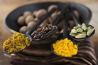Afrique/Afrique de l'Est/Tanzanie/Zanzibar/Ile Unguja/Stone Town:Epices,Curry,Clous de Girofles,Curcuma,Cardamone, Noix de muscade , Zanzibar l'Ile aux épices
