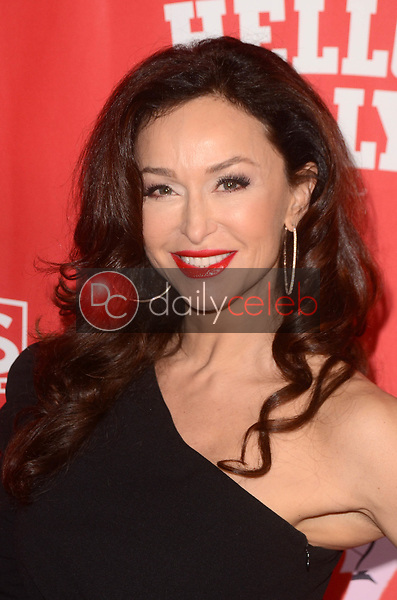 Sofia Milos<br /> at the Hello Dolly! Los Angeles Premiere, Pantages Theater, Hollywood, CA 01-30-19<br /> David Edwards/DailyCeleb.com 818-249-4998