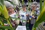 "Three women make their way through ""The Field,"" a display that explores social issues related to agriculture, during at the United Methodist Women Assembly in the Kentucky International Convention Center in Louisville, Kentucky, on April 25, 2014."