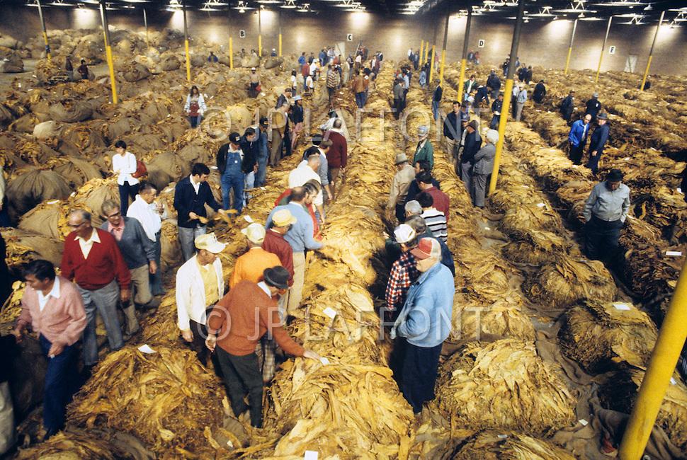 Winston - Salem, North Carolina, September, 1978. Cook warehouse. Tobacco auction.
