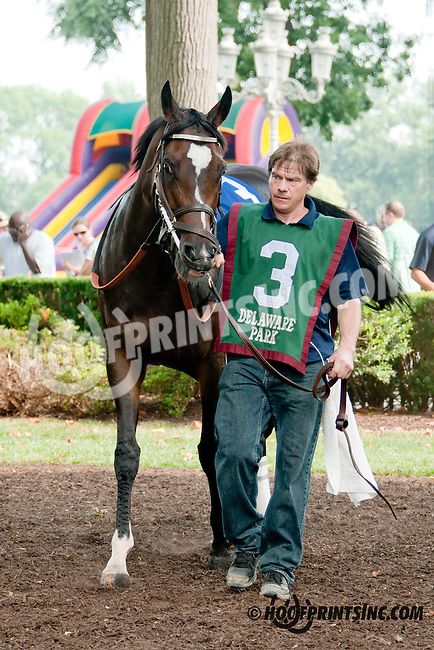 Evening Show before The Sweet and Sassy Stakes at Delaware Park on 7/20/13