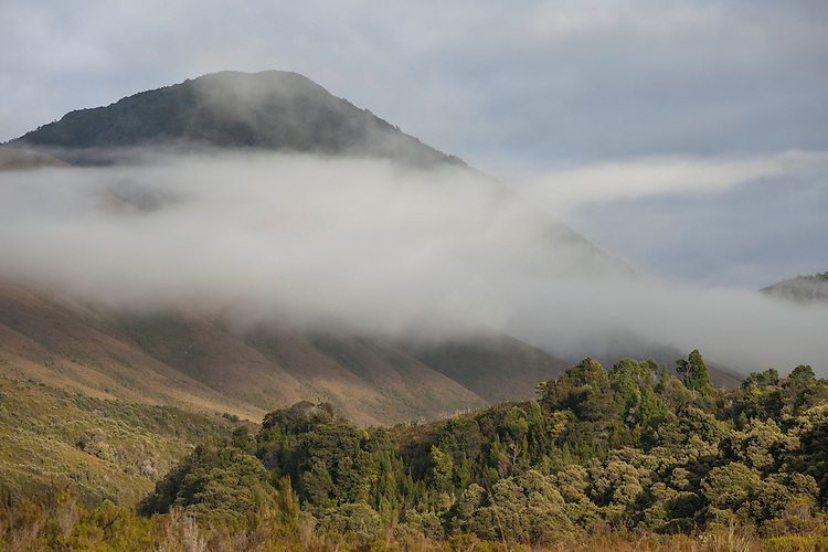 Low clouds shroud the slopes of the West Coast Range in western Tasmania