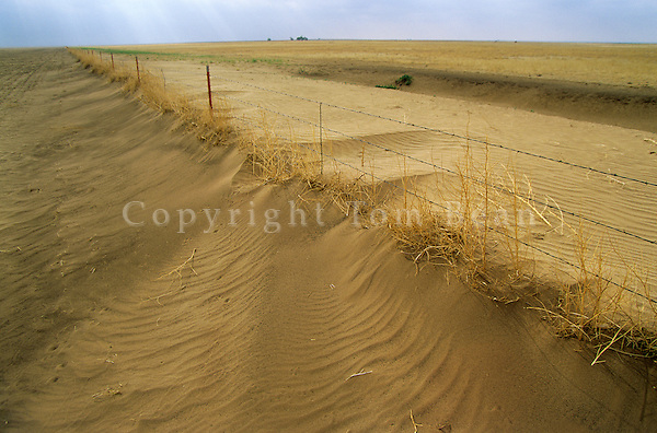 Dust drifts around fence line during Great Plains drought in Cimarron County, Oklahoma, AGPix_0171.