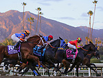 November 2, 2019: Vino Rosso, ridden by Irad Ortiz, Jr., wins the Longines Breeders' Cup Classic on Breeders' Cup World Championship Saturday at Santa Anita Park on November 2, 2019: in Arcadia, California. Sam Navarro/Eclipse Sportswire/CSM