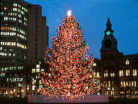 Christmas Tree on the Green with City Hall and Bank Office Building in the background at Twilight. New Haven Connecticut, shot on medium format film in the 1990's. TIF scan is 640 meg.