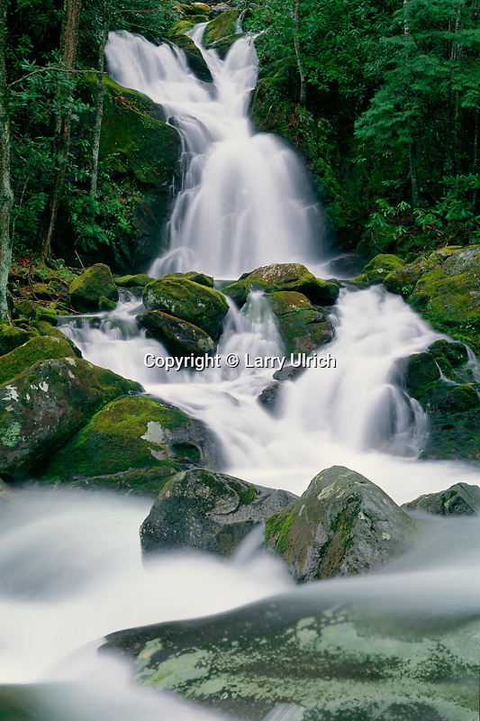Mouse Creek Falls and Big Creek<br />