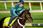 LOUISVILLE, KENTUCKY - APRIL 27: Win Win Win, trained by Michael Trombetta, exercises in preparation for the Kentucky Derby at Churchill Downs in Louisville, Kentucky on April 27, 2019. John Voorhees/Eclipse Sportswire/CSM