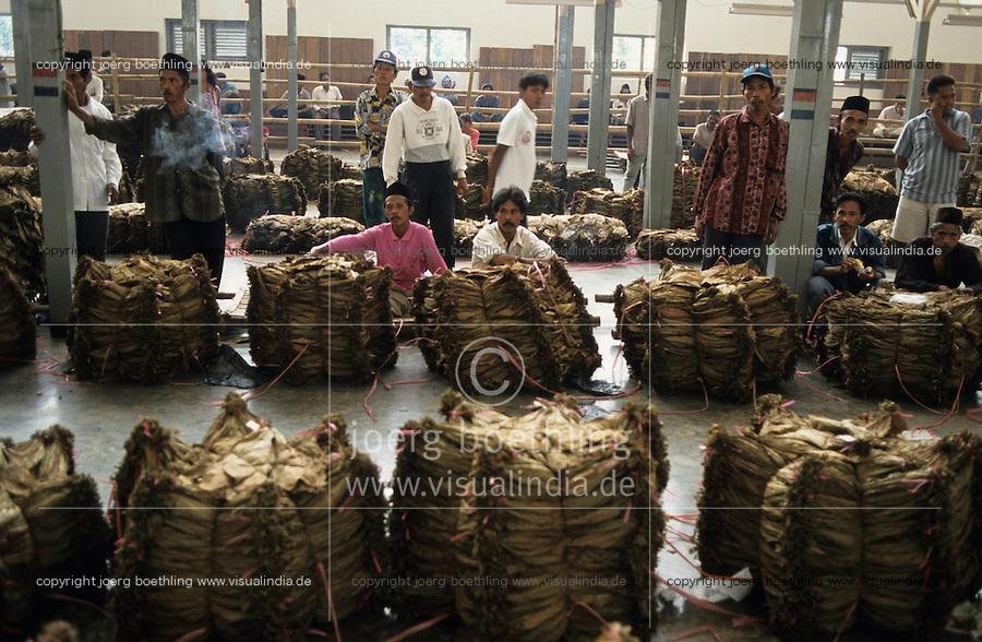 INDONESIA Java Jember, cigar tobacco auction / INDONESIEN Java Jember, Auktion fuer Zigarrentabak