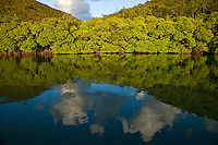 Cloud reflection in the bay at Borck Creek<br /> Hurricane Hole<br /> St. John