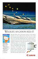 Canon Endangered Wildlife Series in National Geographic Magazine