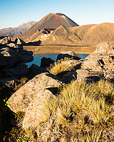 Tussock, volcanic rocks and Blue Lake with volcano Mount Ngaruhoe 2287m in background, Tongariro National Park, Central Plateau, North Island, UNESCO World Heritage Area, New Zealand, NZ