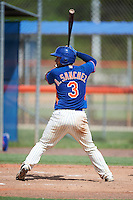GCL Mets catcher Ali Sanchez (3) at bat during the first game of a doubleheader against the GCL Marlins on July 24, 2015 at the St. Lucie Sports Complex in St. Lucie, Florida.  GCL Marlins defeated the GCL Mets 5-4.  (Mike Janes/Four Seam Images)