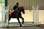 Class 2. Unaffiliated showjumping. Brook Farm Training Centre. Essex. UK. 03/12/2017. ~ MANDATORY Credit Ellen Szalai/Sportinpictures - NO UNAUTHORISED USE - 07837 394578