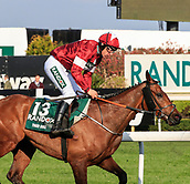 14h April 2018, Aintree Racecourse, Liverpool, England; The 2018 Grand National horse racing festival sponsored by Randox Health, day 3;  Tiger Roll ridden by Davy Russell after winning the Randox Health Grand National