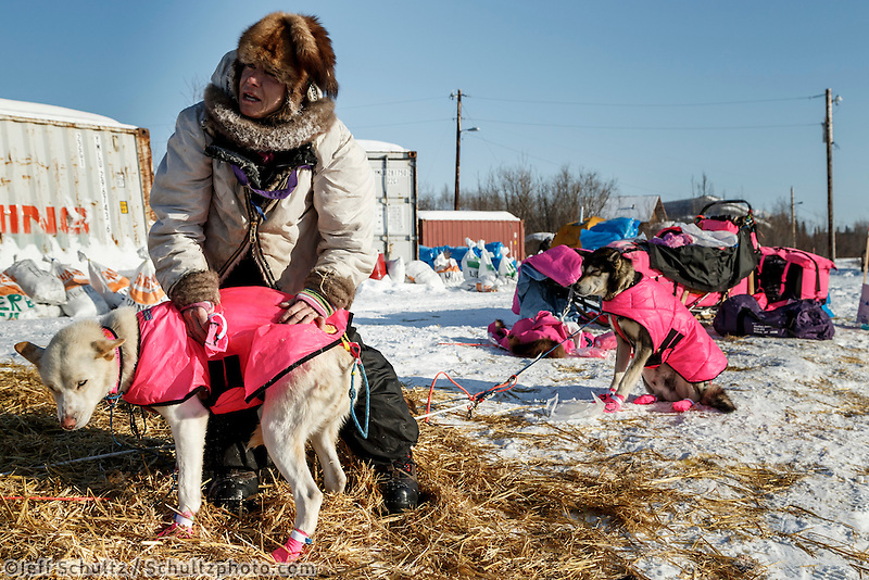 Dee Dee Jonrowe boots dogs as she prepares to leave the Koyukuk checkpoint on the afternoon of Sunday  March 15, 2015 during Iditarod 2015.  <br /> <br /> (C) Jeff Schultz/SchultzPhoto.com - ALL RIGHTS RESERVED<br />  DUPLICATION  PROHIBITED  WITHOUT  PERMISSION