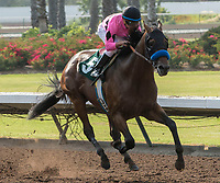 CYPRESS, CA. JULY 15:#5 West Coast ridden by Drayden Van Dyke in the stretch of the Los Alamitos Derby (Grade lll) on July 15, 2017, at Los Alamitos Race Course in Cypress, CA.  (Photo by Casey Phillips/Eclipse Sportswire/Getty Images)