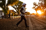 OCT 26: Jockeys Abel Cedillo and Martin Garcia race to the barn between sets at Santa Anita Park in Arcadia, California on Oct 26, 2019. Evers/Eclipse Sportswire/Breeders' Cup