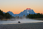 First light strikes the summit of Mount Moran painting the sky orange as a female grizzly wades a shallow bend in the Snake River in Grand Teton National Park, Wyoming.