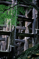 Kyoto: Todaiji Temple--buttresses. Photo '81.