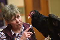 NWA Democrat-Gazette/FLIP PUTTHOFF <br /> WILDLIFE DOC<br /> Lynn Sciumbato, wildlife rehabilitator, shows Igor, a turkey vulture under her care, during her presentation on Saturday April 13 2019 at Hobbs State Park-Conservation Area. Sciumbato also brought a kestrel, barred owl and great horned owl and talked about the habits of each bird during her program. Sciumbato operates Morning Star Wildlife Rehabilitation Center near Gravette. Her program was part of Earth Day events on Saturday at the park.