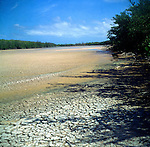 Dried lagoon, Little Cayman, Cayman Islands,