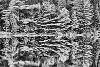 Reflection at Found Lake, Algonquin Provincial Park, Ontario, Canada