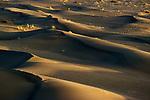 Desert Sand Dunes, Morocco Sahara,