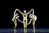 Royal Ballet 16th November 2015