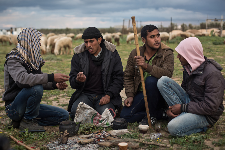 GAZA,Erez: Hassan is talking with his cousins who are also sheperds. Hassan's father married 5 differents women, therefore he has so many brothers and sisters that he doesn't know how many they are exactly &quot;When I opened my eyes, I discovered to many of them&quot;  says Hassan.  To have a big family is part of the bedouin culture. <br /> <br /> GAZA, Erez: Hassan discute avec ses cousins qui sont aussi bergers. Le p&egrave;re de Hassan a &eacute;t&eacute; mari&eacute; &agrave; 5 femmes, par cons&eacute;quent, il a tant de fr&egrave;res et s&oelig;urs qu'il ne sait pas combien ils sont exactement &quot; Quand j'ai ouvert les yeux, j'ai d&eacute;couvert qu'ils &eacute;taient tr&egrave;s nombreux &raquo;, dit Hassan . Avoir une grande famille fait partie de la culture b&eacute;douine .