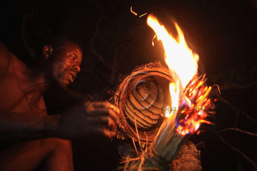 The African bee is known for its aggressiveness, increased tenfold by certain odours, like that of perspiration. The smoke from a torch of flaming dried grass drives the bees to take refuge in the back of the hive. The honeycombs are quickly put through the fire to kill the attackers.