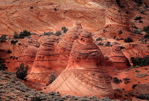 The Paw Hole Teepees at South Coyote Buttes at the Vermillion Cliffs National Monument, Arizona